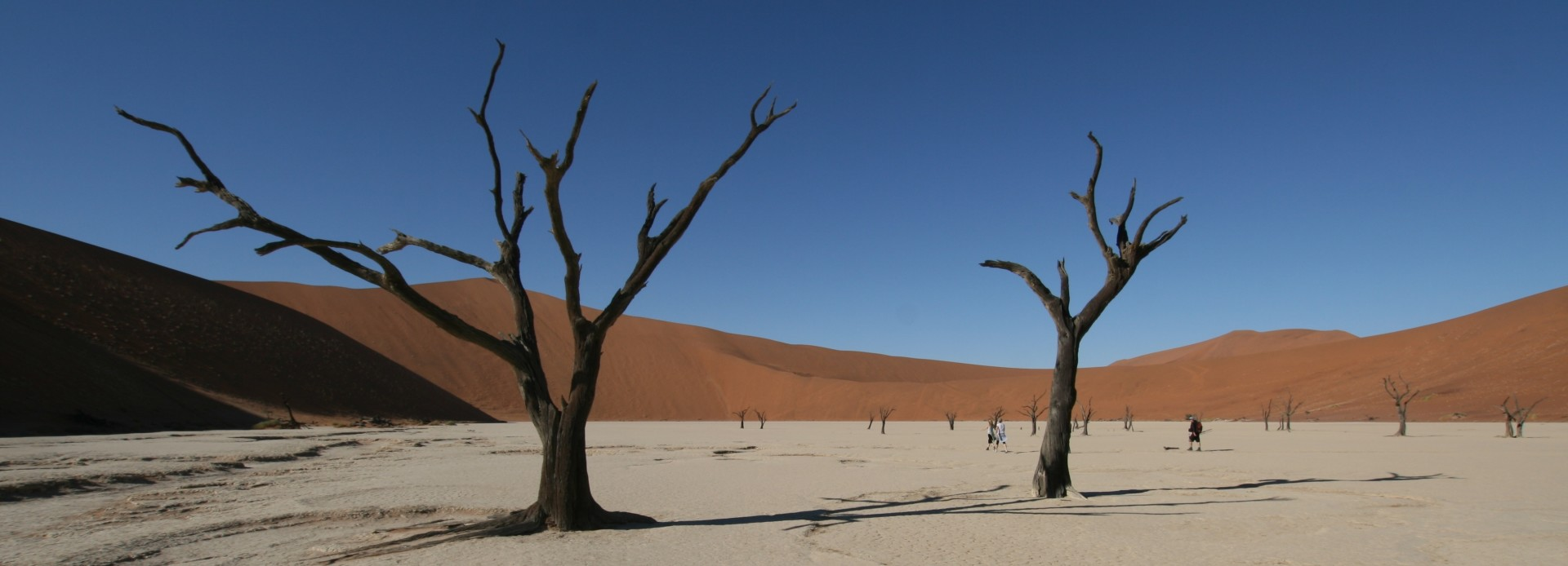Namibia im Dead Vlei