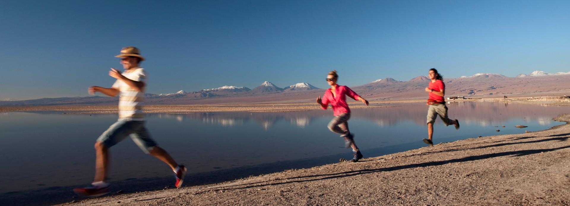 Chile Laguna Chaxa in der Atacama Wüste