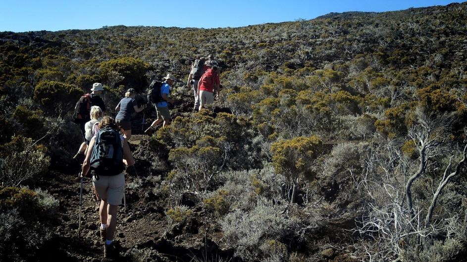 Réunion Wanderung am Piton de la Fournaise