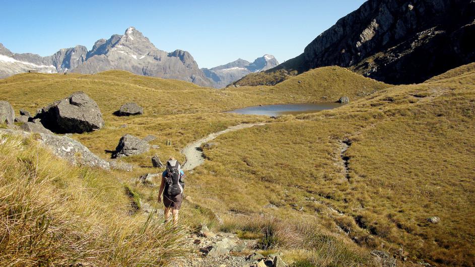 Neuseeland Wanderung Routeburn Track Harris Saddle