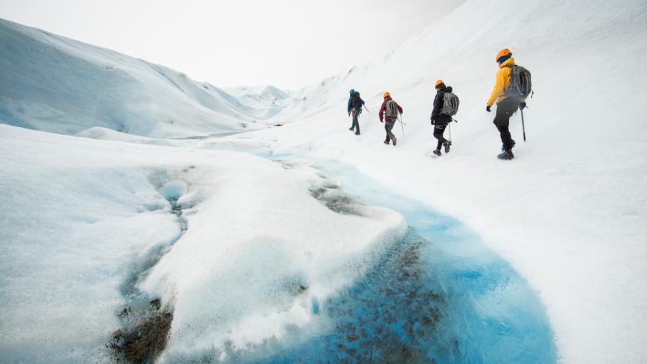Gletscherwanderung Grey Gletscher