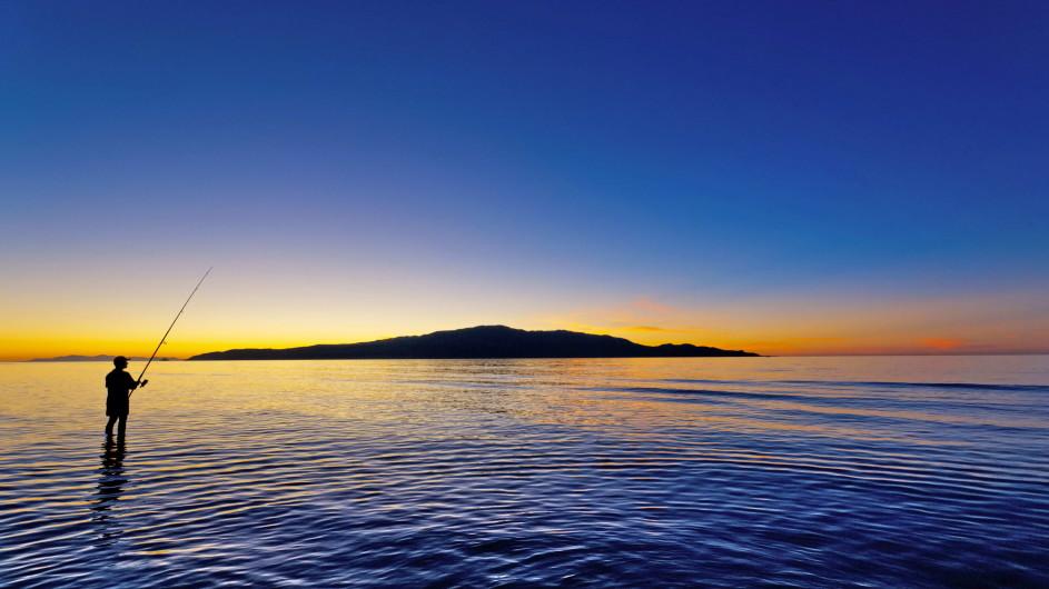Neuseeland Kapiti Island