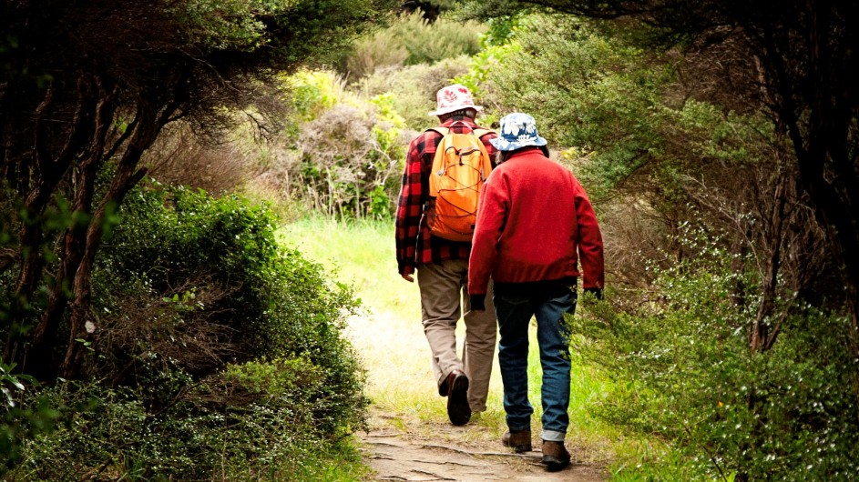 Neuseeland Wanderer