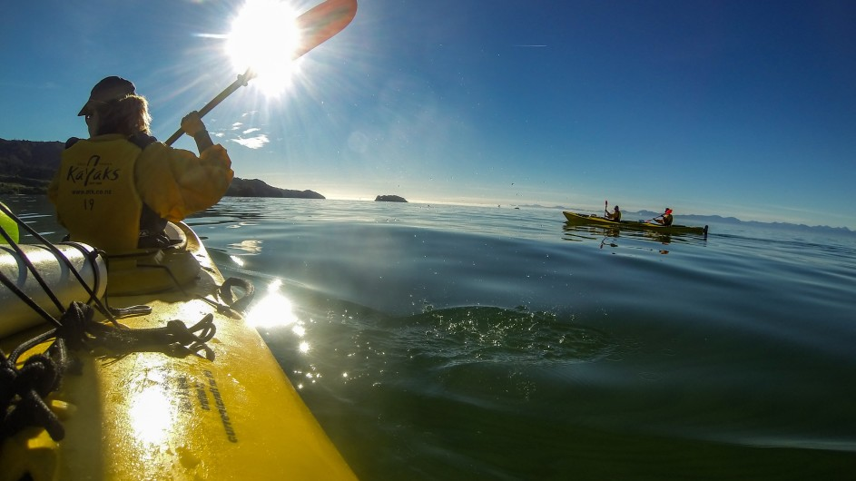 Neuseeland Abel Tasman Nationalpark Kayaktour