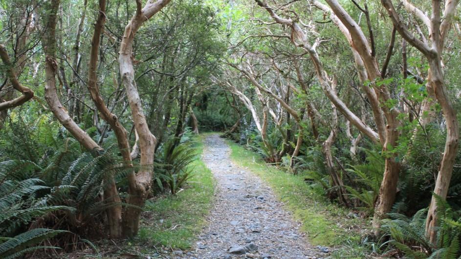 Neuseeland - Milford Track