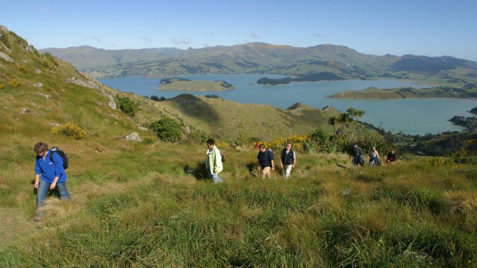 Neuseeland Wanderung