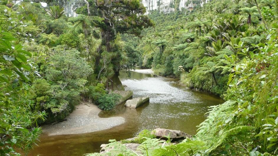 Neuseeland Punakaiki River