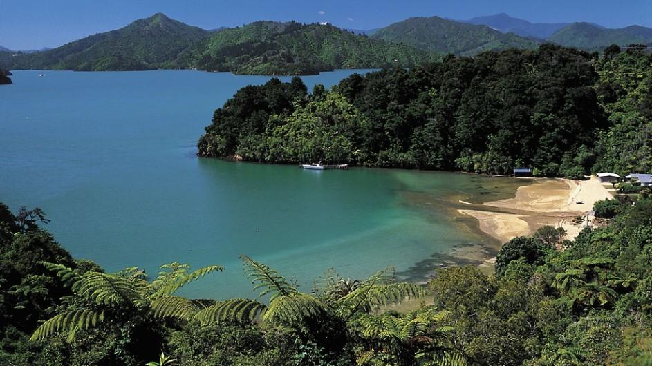 Neuseeland Queen Charlotte Sound
