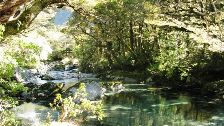 Neuseeland Routeburn River