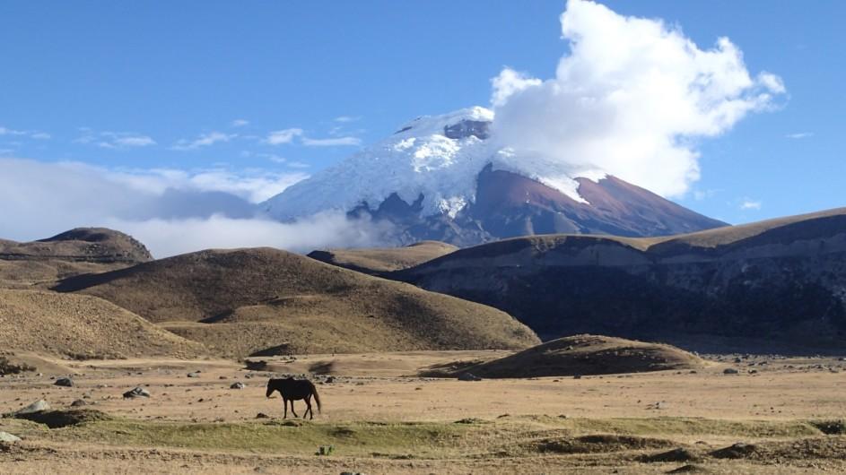Ecuador Cotopaxi Wandern in den Anden