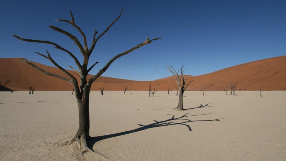 Namibia Deadvlei Namib Wüste