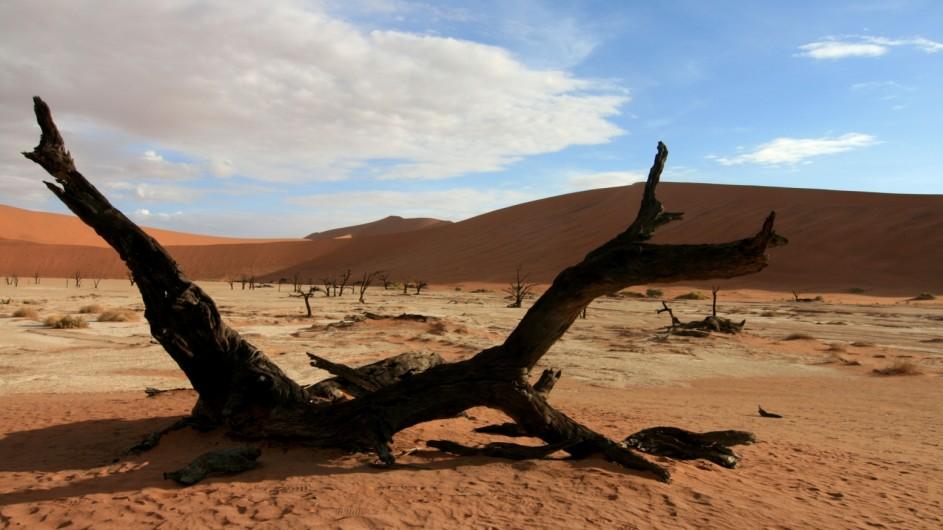 Namibia Namib Wüste Deadvlei