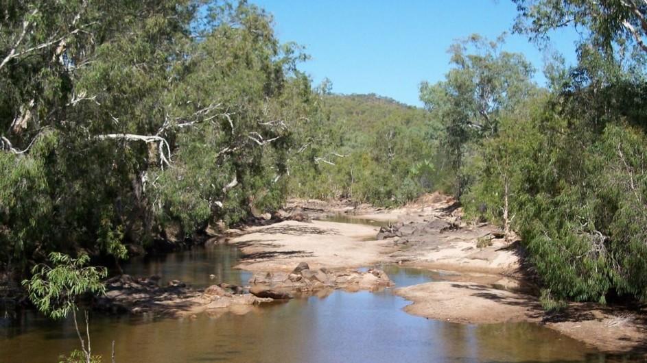 Australien Queensland auf dem Weg nach Chillagoe