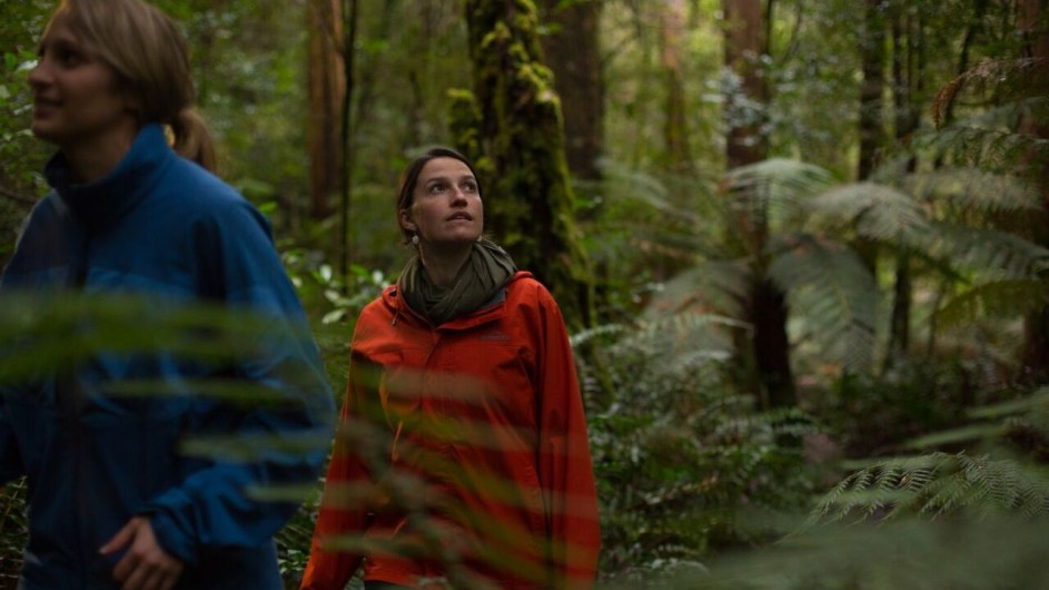 Australien Tasmanien Wanderung Bruny Island