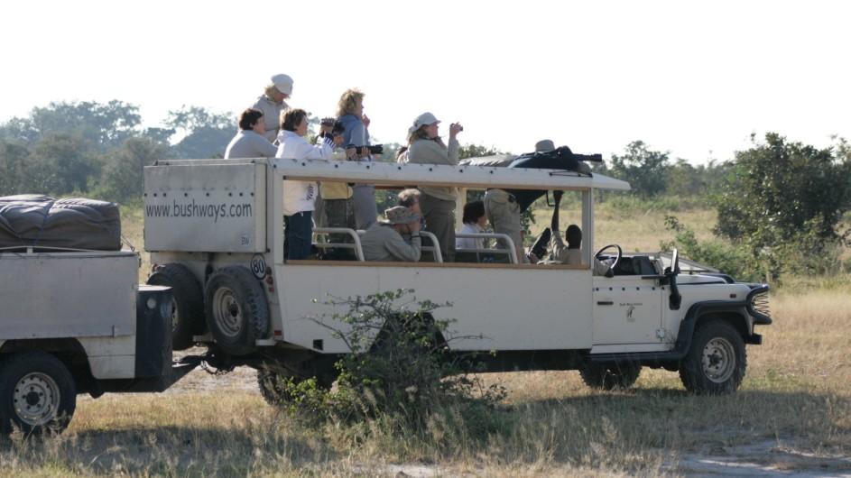 Botswana Pirschfahrt