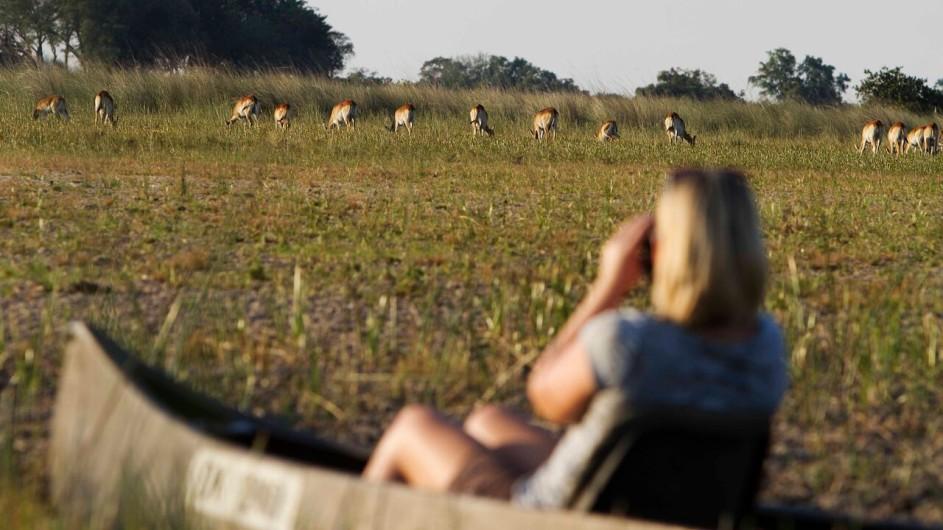 Botswana Camp Okavango Mokoro Ausflug