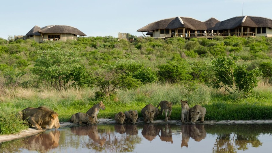Botswana Tau Pan Camp Wasserloch