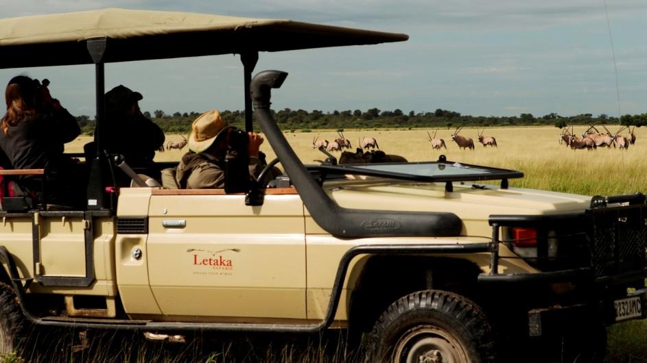 Botswana Letaka Safaris Pirschfahrt