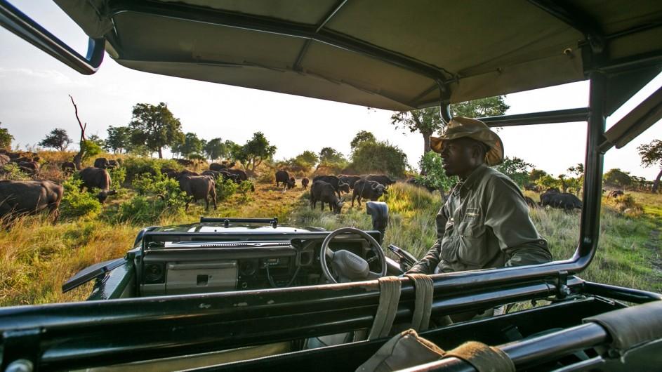 Botswana Okavango Delta Duba Plains Pirschfahrt