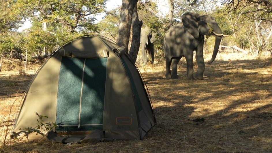 Botswana Sunway Safaris Campansicht