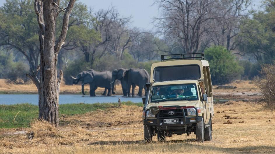 Botswana Sunway Safaris Pirschfahrt im Moremi Game Reserve
