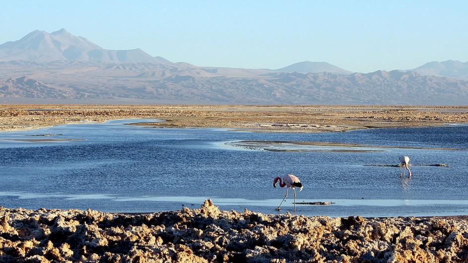 Chile Atacama Wüste Salzsee