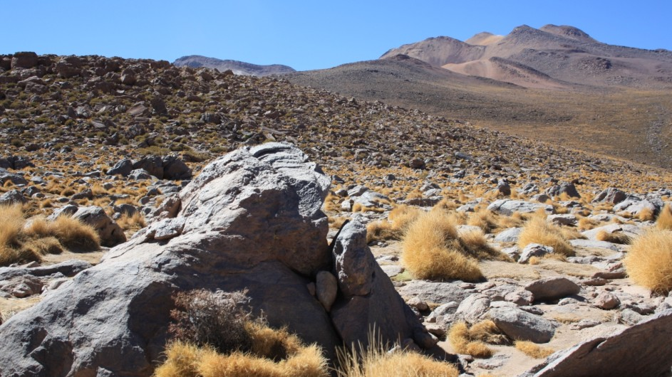 Chile Atacama Wüste auf dem Tatio