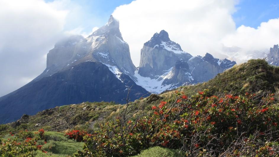 Chile Torres del Paine Hörner