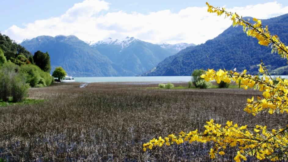 Chile am Lago Petrohue