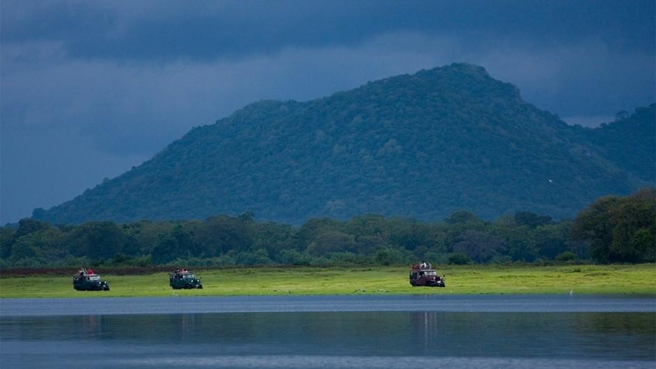 Sri Lanka auf Safari
