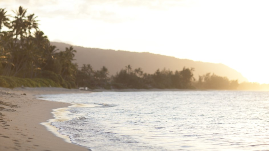 USA Hawaii Oahu Strand Sonnenuntergang