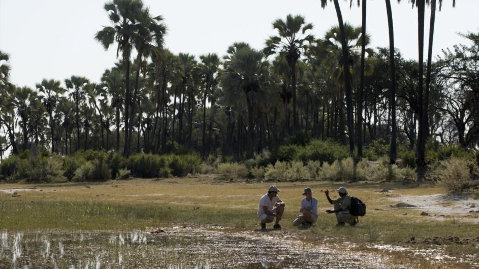Botswana Expedition Fusspirsch im Okavango Delta