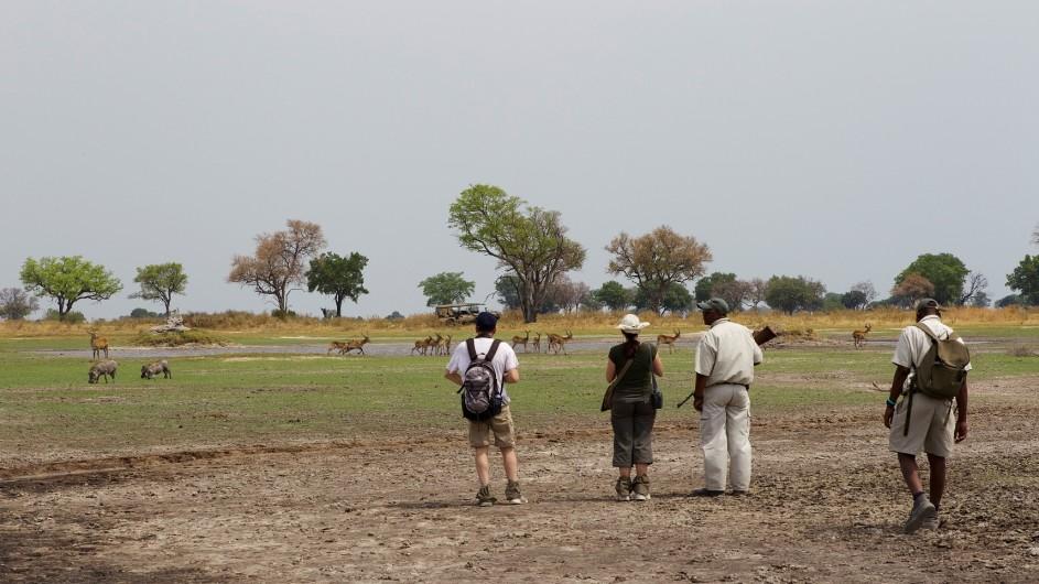 Botswana Okavango Delta Fusspirsch