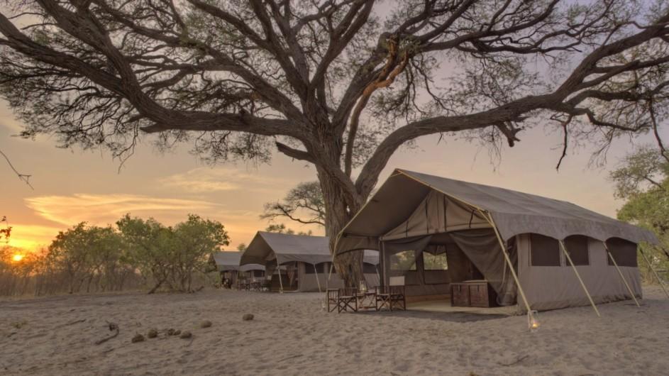 Botswana Savute under Canvas Zelt
