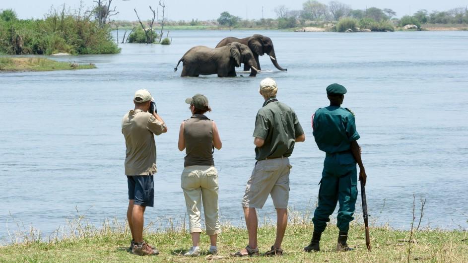 Malawi Mkulumadzi Lodge Elefanten im Majete Wildreservat