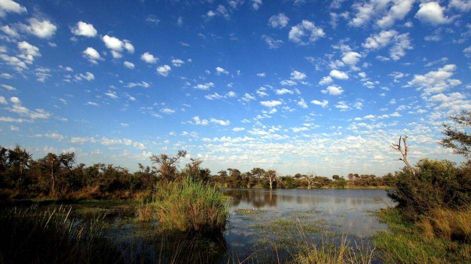 Südafrika Marataba12