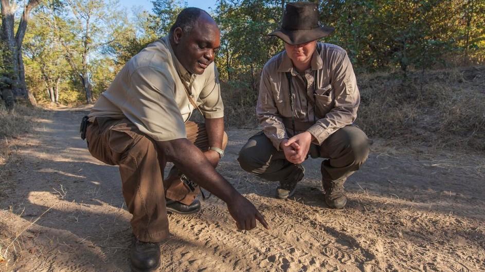 Zambia Island Bush Lodge Spurensuche