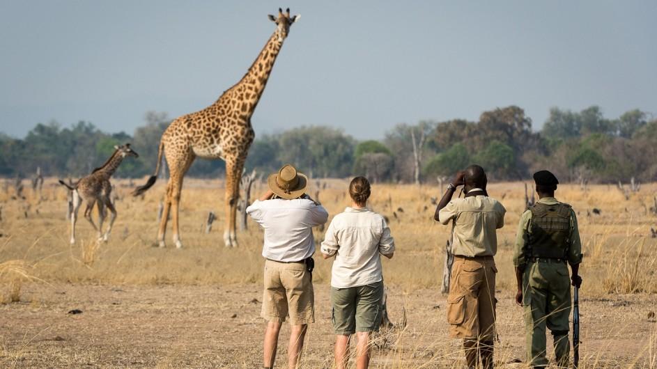 Zambia Nsefu Camp Fusspirsch