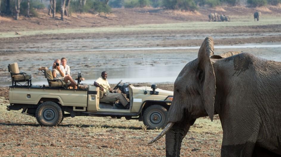 Zambia Pirschfahrt