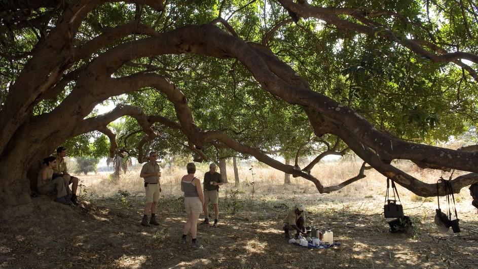Zambia Wandersafari Pause