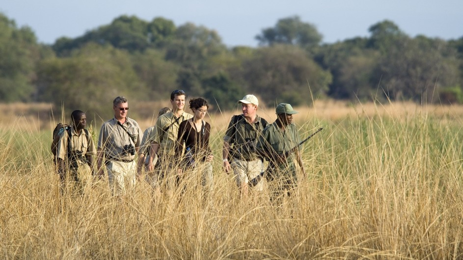 Zambia Wandersafari Wanderung durchs hohe Gras