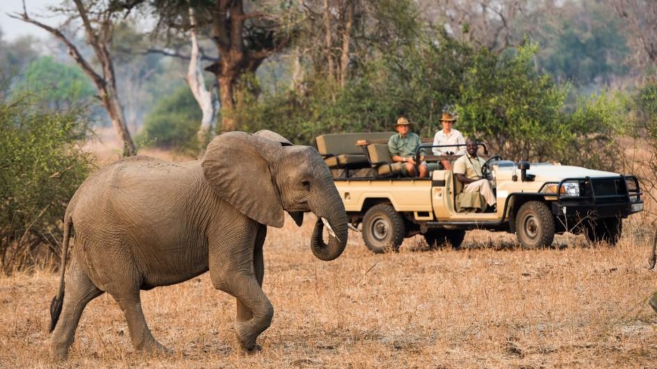 Zambia WAndersafari Pirschfahrt Elefant