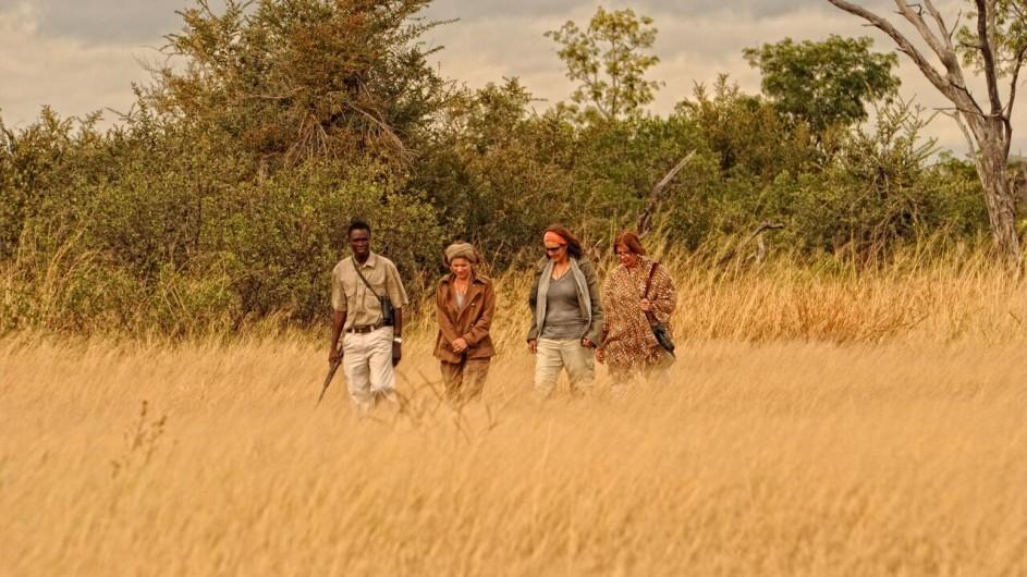 Zimbabwe Somalisa Camp Fusspirsch