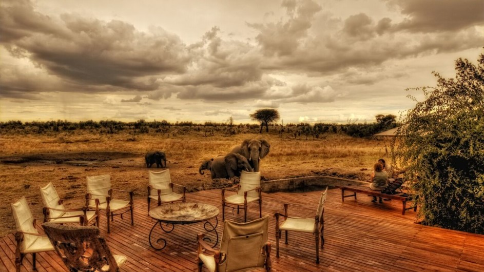 Zimbabwe Somalisa Camp Terrasse mit Elefanten