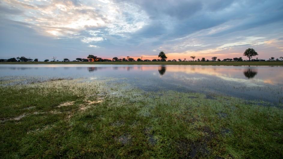 Zimbabwe Hwange Nationalpark