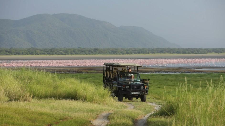 Tanzania Lake Manyara Pirschfahrt