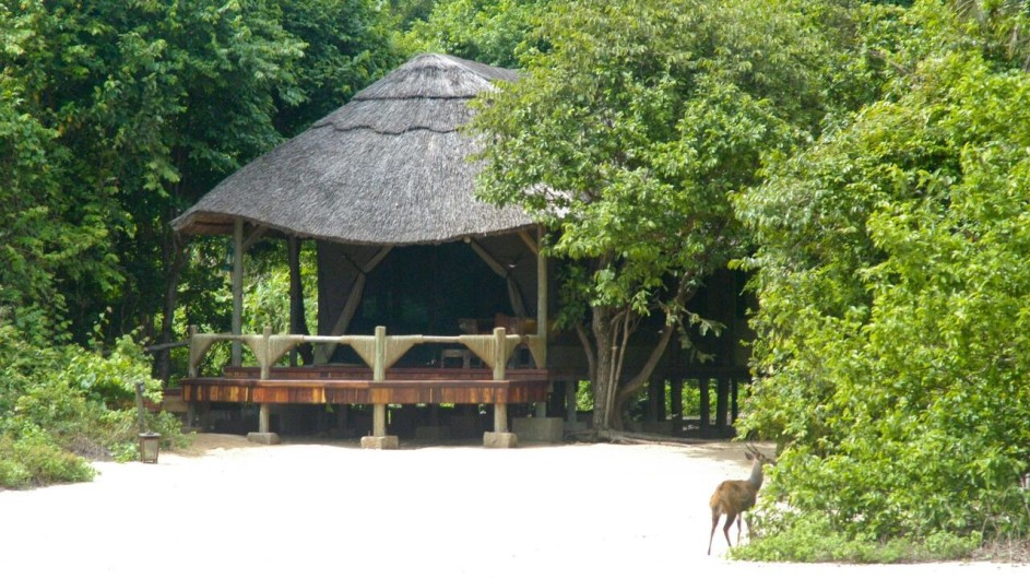 Tanzania Mahale Nationalpark Kungwe Beach Lodge Zimmer