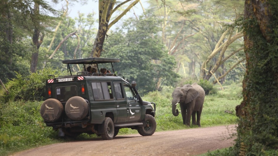 Tanzania Ngorongoro Crater Lodge Pirschfahrt mit Elefant