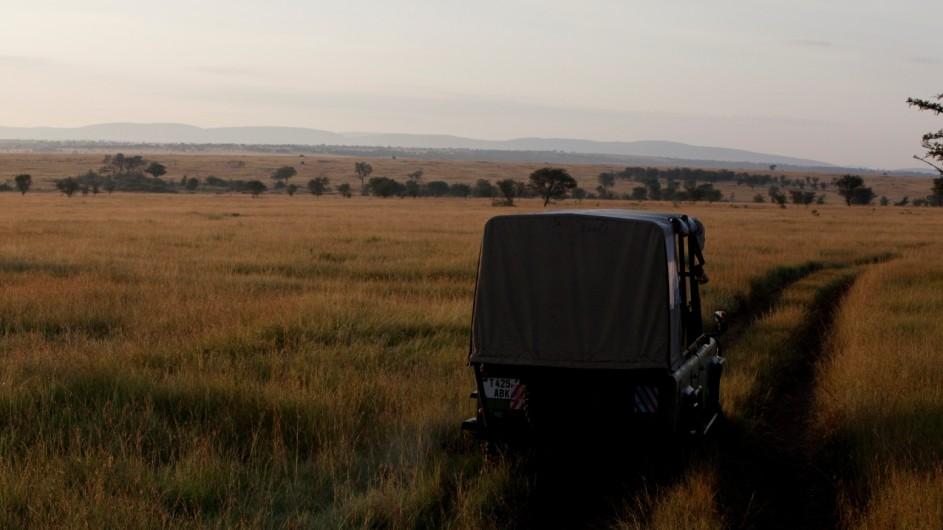 Tanzania Serengeti Olakira Camp Pirschfahrt