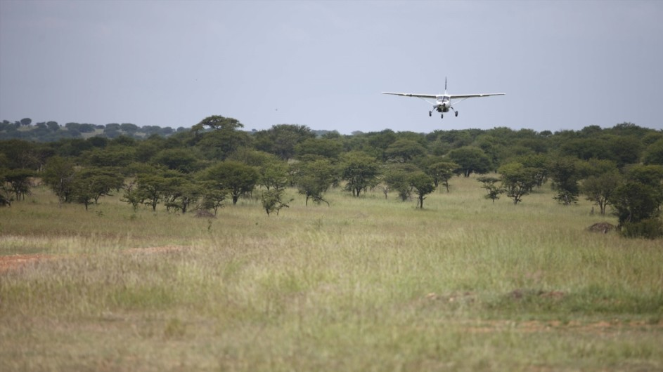 Tanzania Serengeti Kleins Camp Ankunft mit dem Flugzeug